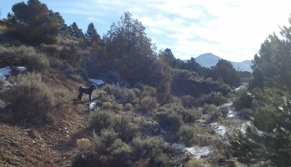 Rift Trail Arroyo 12-14-15