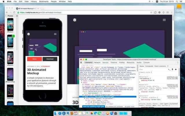 the browser Blisk.1