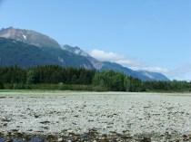 Alaska-20100729-20100807 091