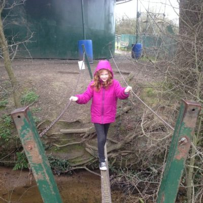 10 Tips for visiting The Crocky Trail in Chester