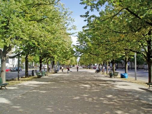 Unter_Den_Linden_Berlin_-_2006.jpg