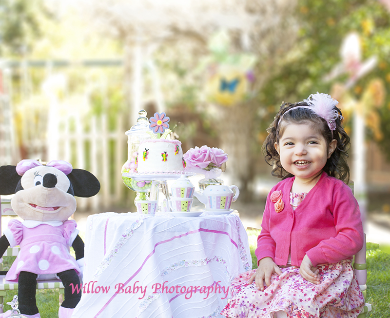Two Year Old Birthday » Willow Baby Photography