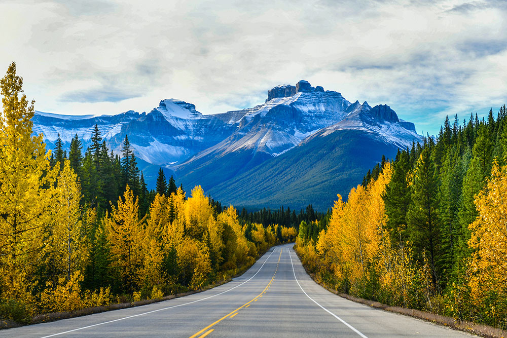 "The road 93 beautiful ""Icefield Parkway"" in Autumn Jasper National park, Alberta"