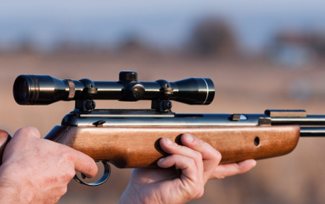4 Reasons To Add A Pellet Air Gun To Your Survival Arsenal –