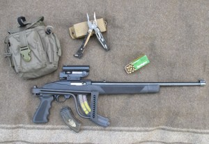 Ruger 10-22: Compact=