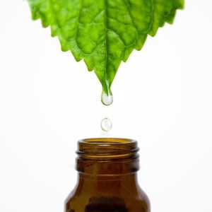 Extracts/Tinctures