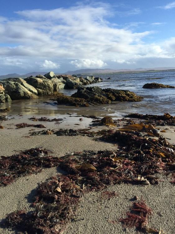 Küste vor Bruichladdich