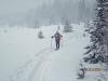 Almost blizzard conditions