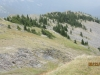 Greener pastures lower on the Ridge