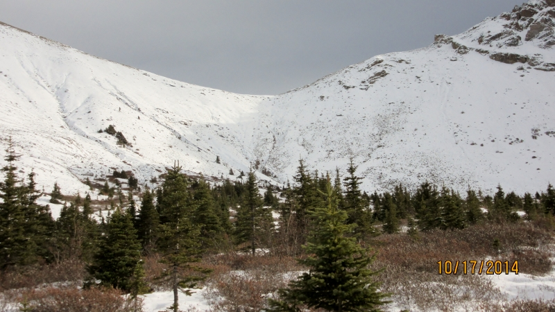Buller North Pass Col