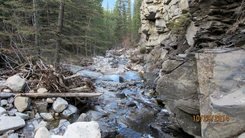 A few hours up McDougall Creek
