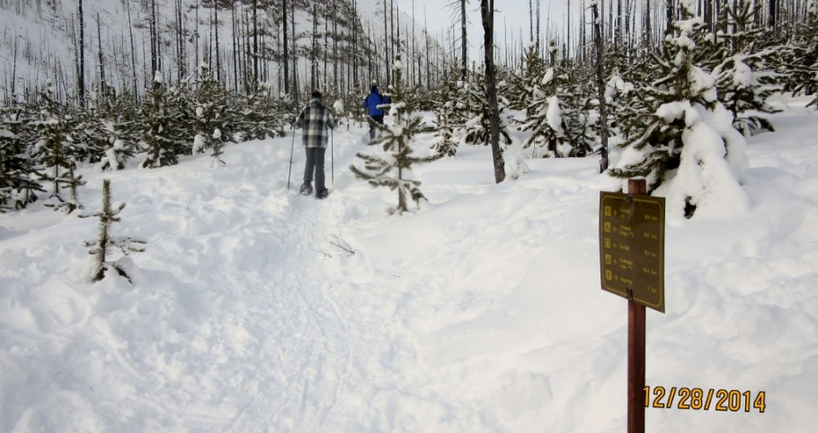 Snow Shoeing up the Tokumn Valley