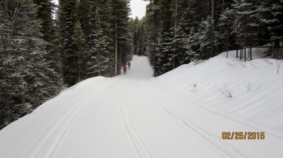 Start of Elk Pass Trail PLPP