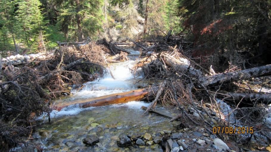 Crossing Headwall Creek