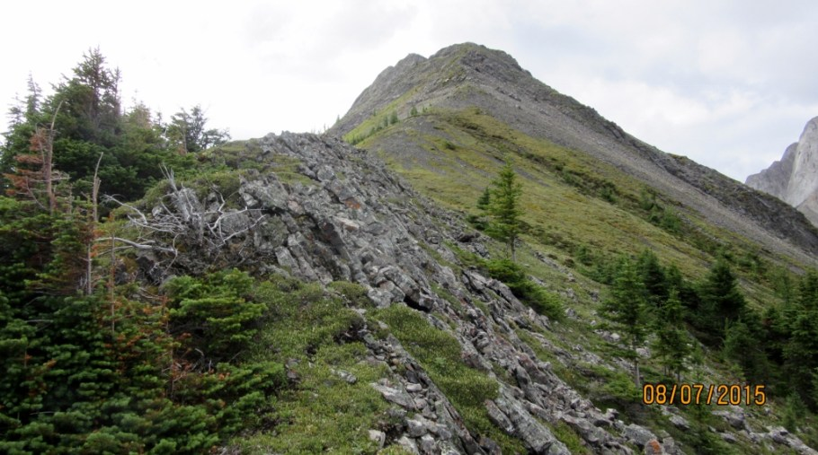 Above tree line with the Ridge ahead