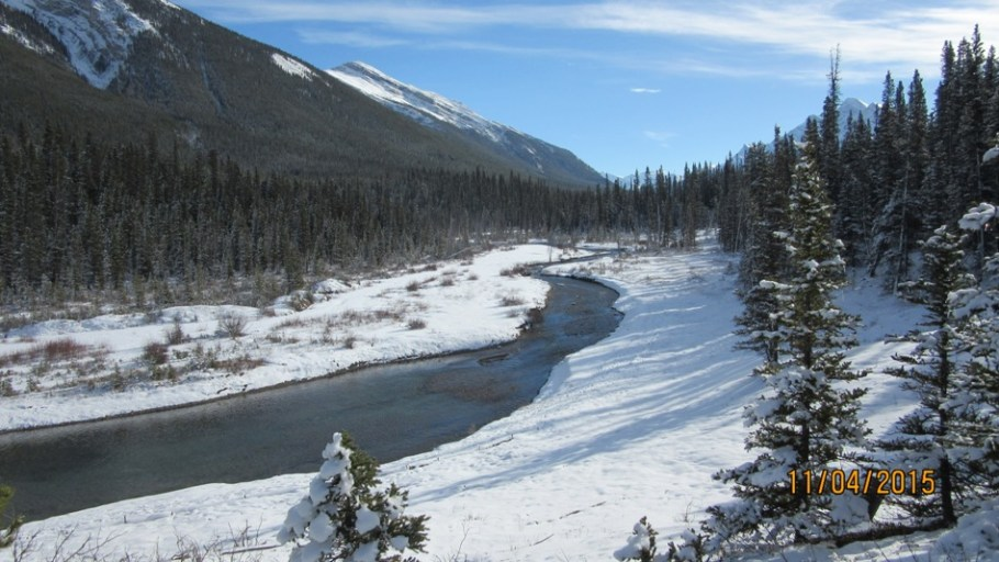 Looking south up the Goat Creek