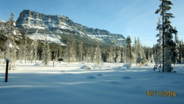 Castle Mountain to Baker Creek Cross Country Skiing