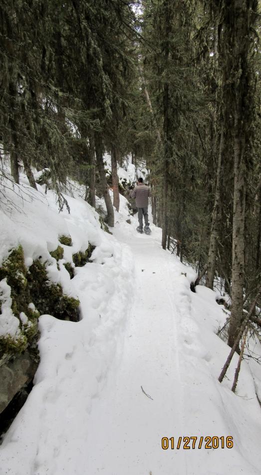 Trail down