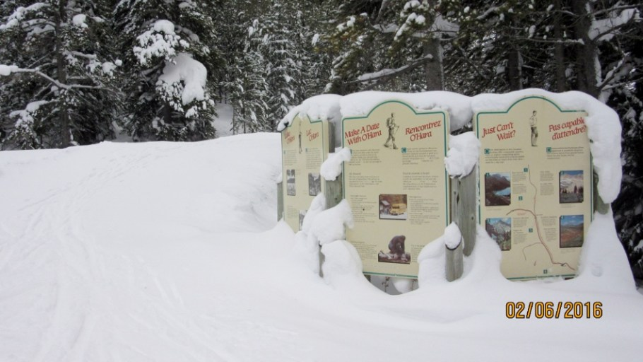 Signs at the trail head