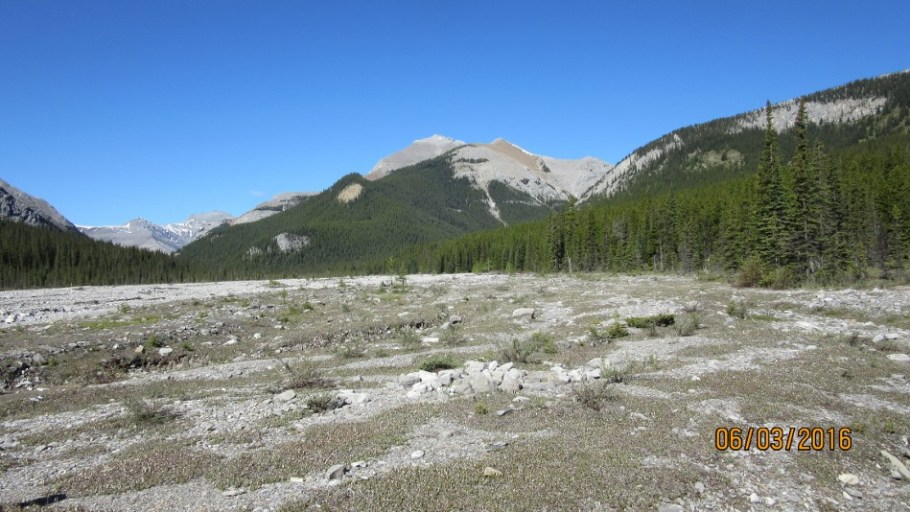 The wide expance of Upper Canyon Creek. First fork center right. Center Mt Bryant.