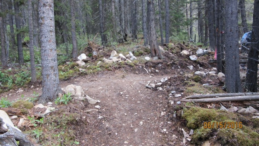 At the juction of the High Rockies Trail. Trail to Red Ridge is 1 meter right