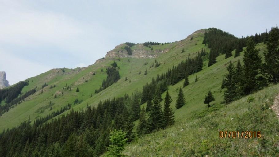 Top of Wind Ridge from below Windy Point