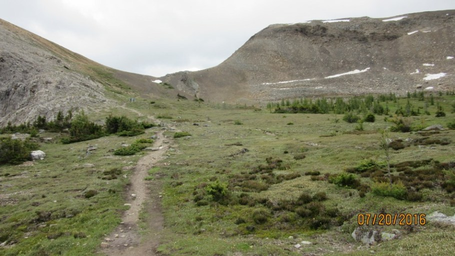Trail up to Harvey Pass