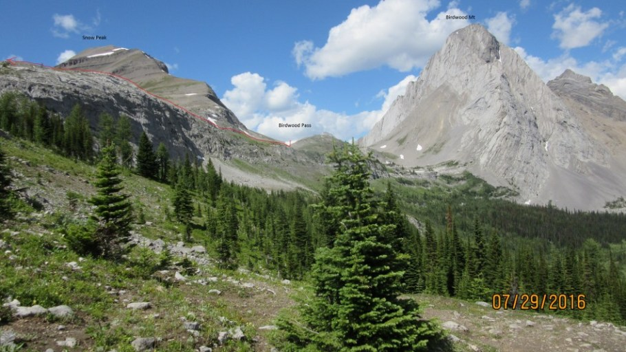 The route through from Birdwood Pass. Taken lower down the Burstall Trail