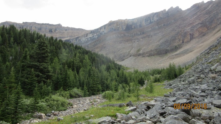 Mt Redoubr is left follow creek around the trees