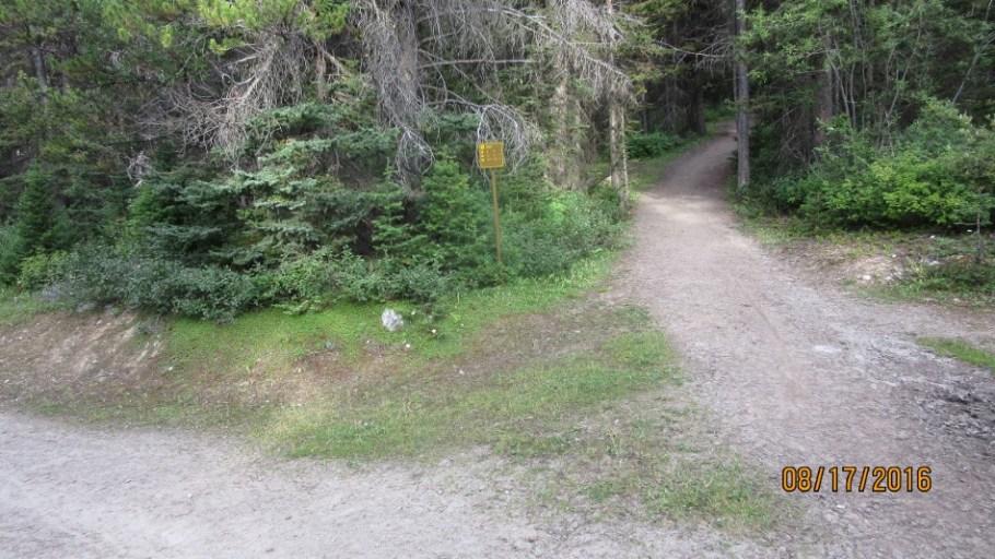At the Ross Lake turn