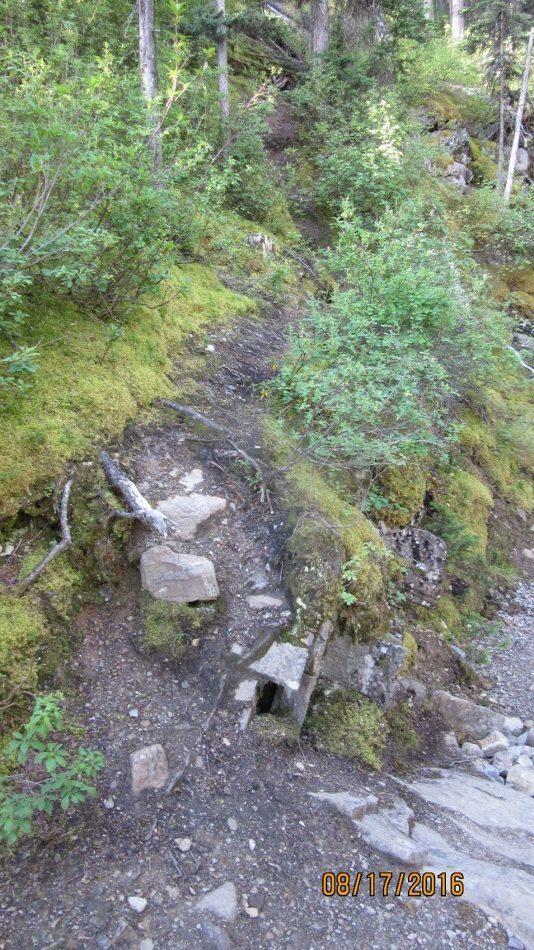 The turn at Minewakun Creek