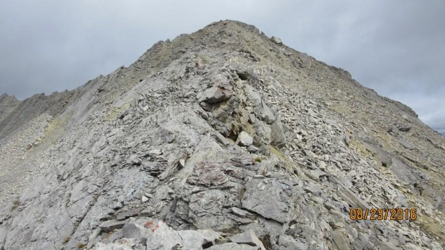 Summit of Lineham Ridge