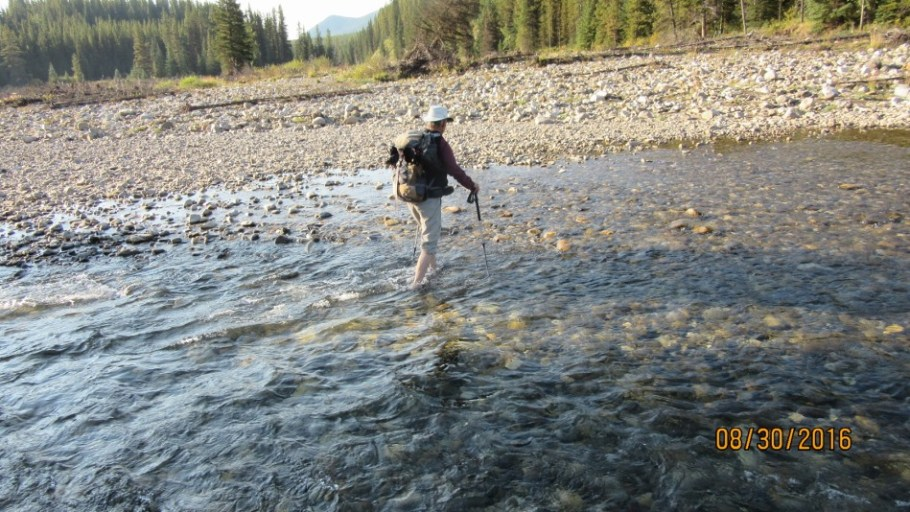 Lee crossing Highwood River
