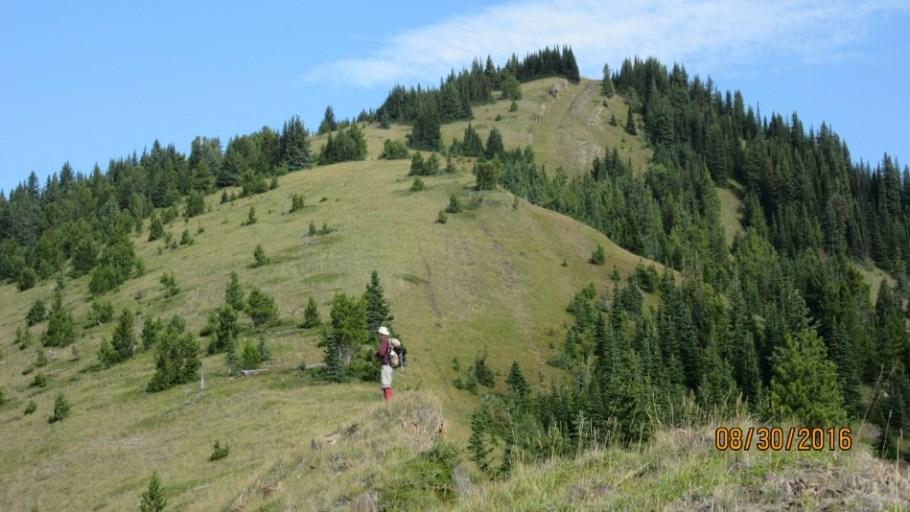 Odlum Ridge lower peak in the trees