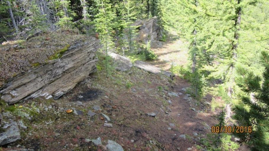 Nice shelter rock wall on the ridge