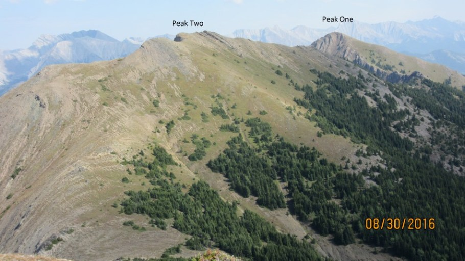 Looking back along the whole Odlum Ridge