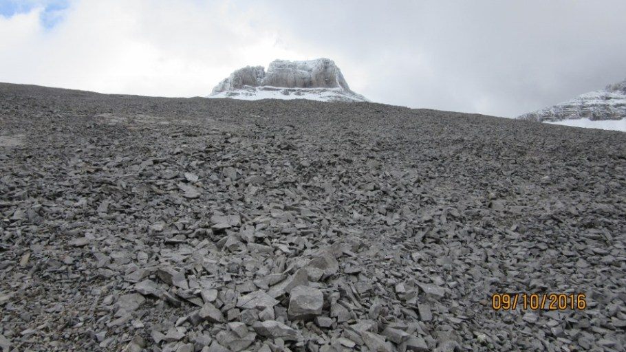 Poor conditions on Sparrowhawk summit