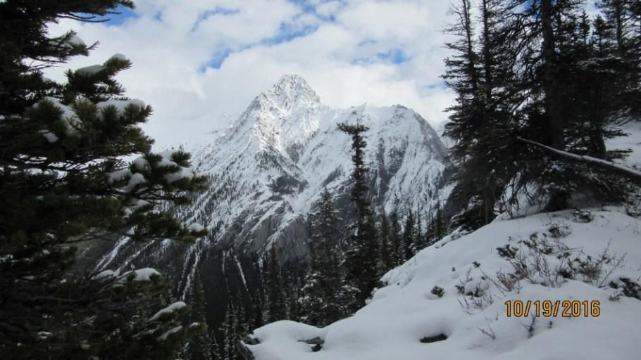 Mt Cockscomb