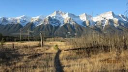 Mt Peechee Ridge