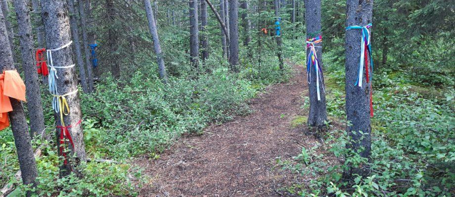 Elpoca Creek Hill