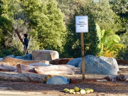 Nature Exploration Area
