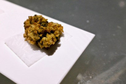 Enigma Concept - Fried sea anemome.