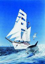 Übermut und Lebensfreude (Meeresrauschen)