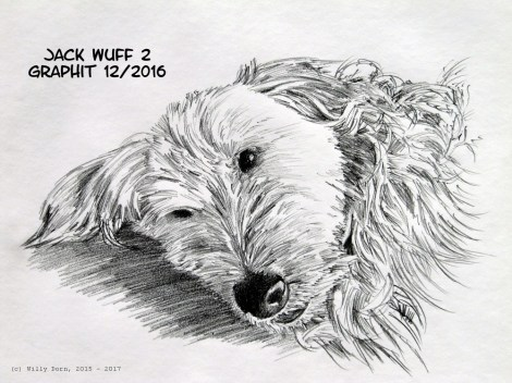 Tierzeichnungen, Willy Dorn
