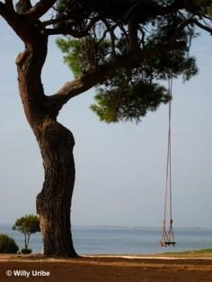 Cabo de Veli Rat. Dugi Otok. Dalmacia. Croacia.