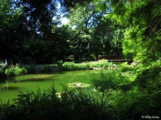 Zagreb_Botanic_009