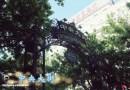 哈尔滨之旅二 中央大街