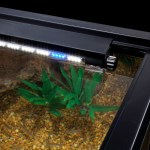 Bring the coolest new lighting system to your aquarium