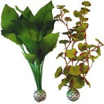 Live aquarium plants vs artificial
