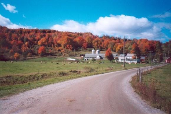Wheeler Farm by M. Towne